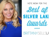 Vote for me – Best of Silver Lake